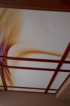 Потолок в деревянном обрамлении