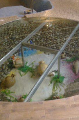 стеклянный пол в рабочем кабинете с композицией