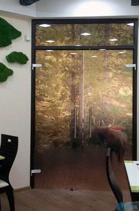 Стеклянные двустворчатые двери с фотопечатью